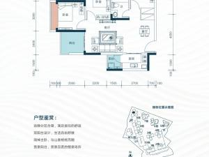 深圳星都梅沙天邸新房楼盘户型图54
