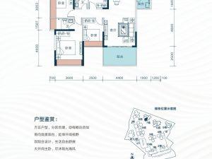 深圳星都梅沙天邸新房楼盘户型图61